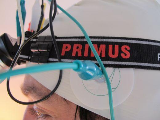 Bild: Primus